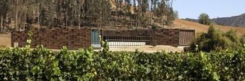 morandé winery