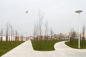 caxinas park
