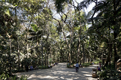 trianon park