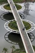 bayer bridge