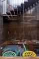 archea studio archea