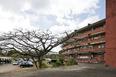 former seminário regional do nordeste delfim amorim